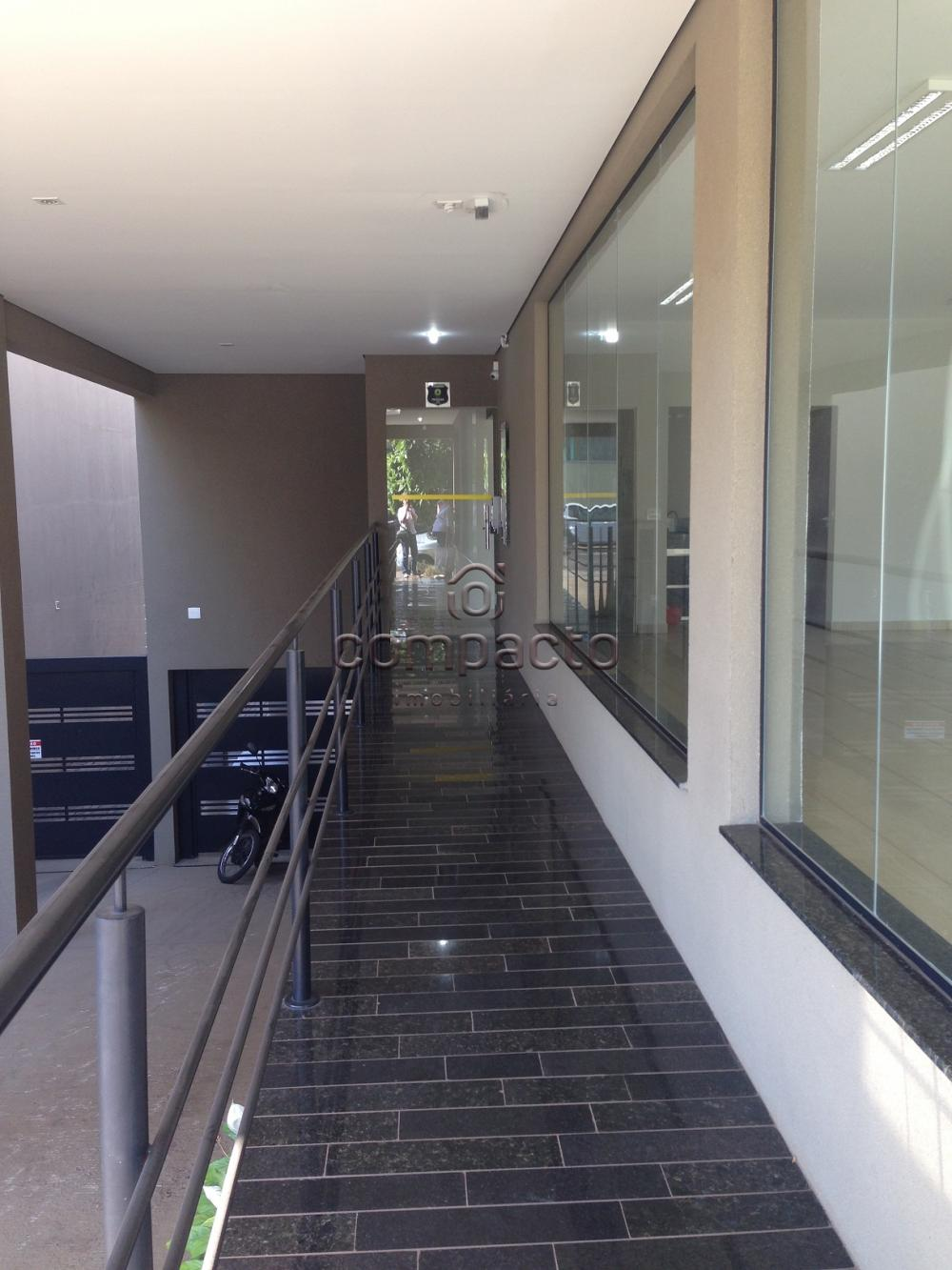Alugar Comercial / Sala/Loja Condomínio em São José do Rio Preto apenas R$ 900,00 - Foto 5