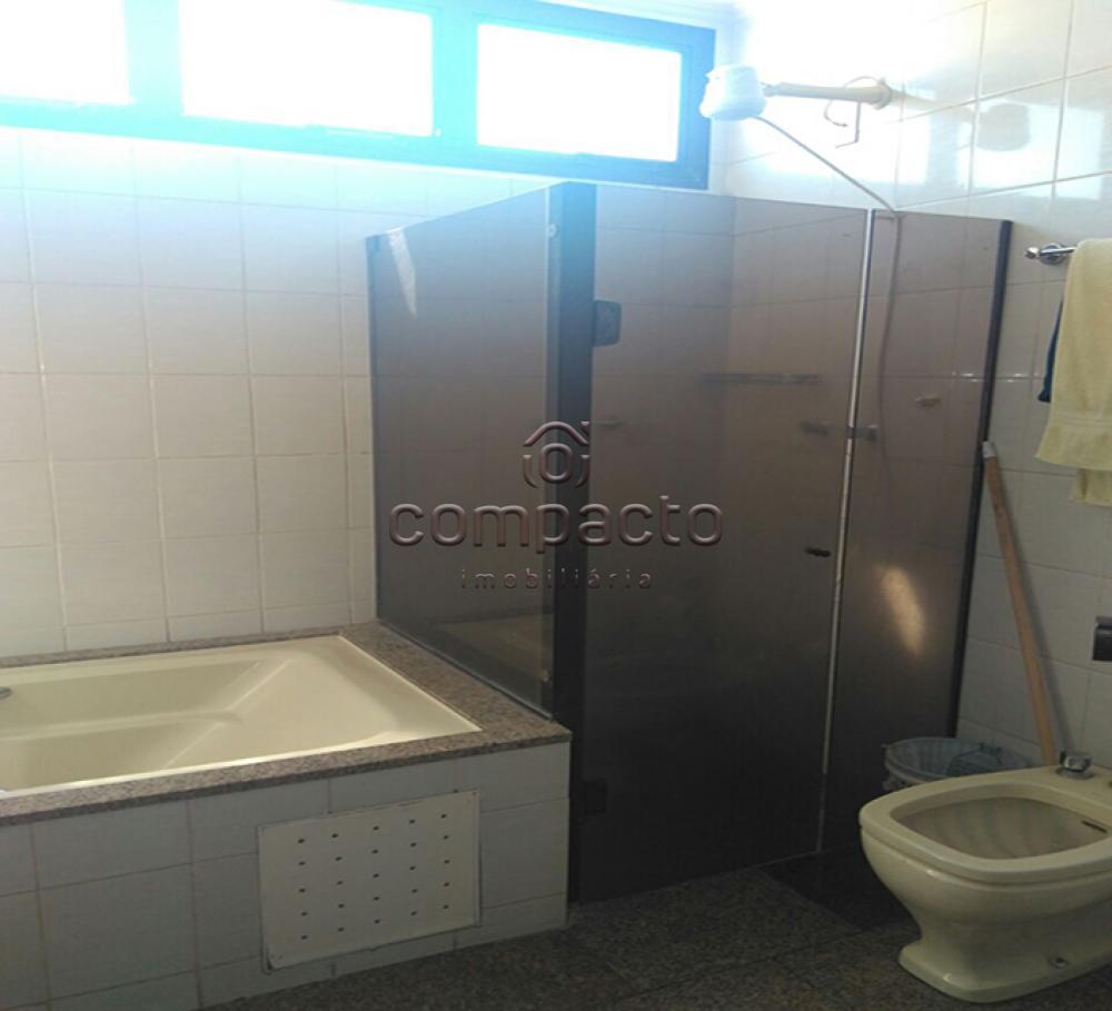 Alugar Apartamento / Padrão em São José do Rio Preto apenas R$ 500,00 - Foto 17