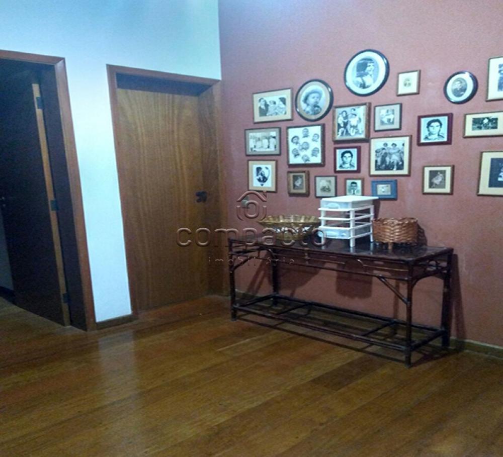 Alugar Apartamento / Padrão em São José do Rio Preto apenas R$ 500,00 - Foto 5