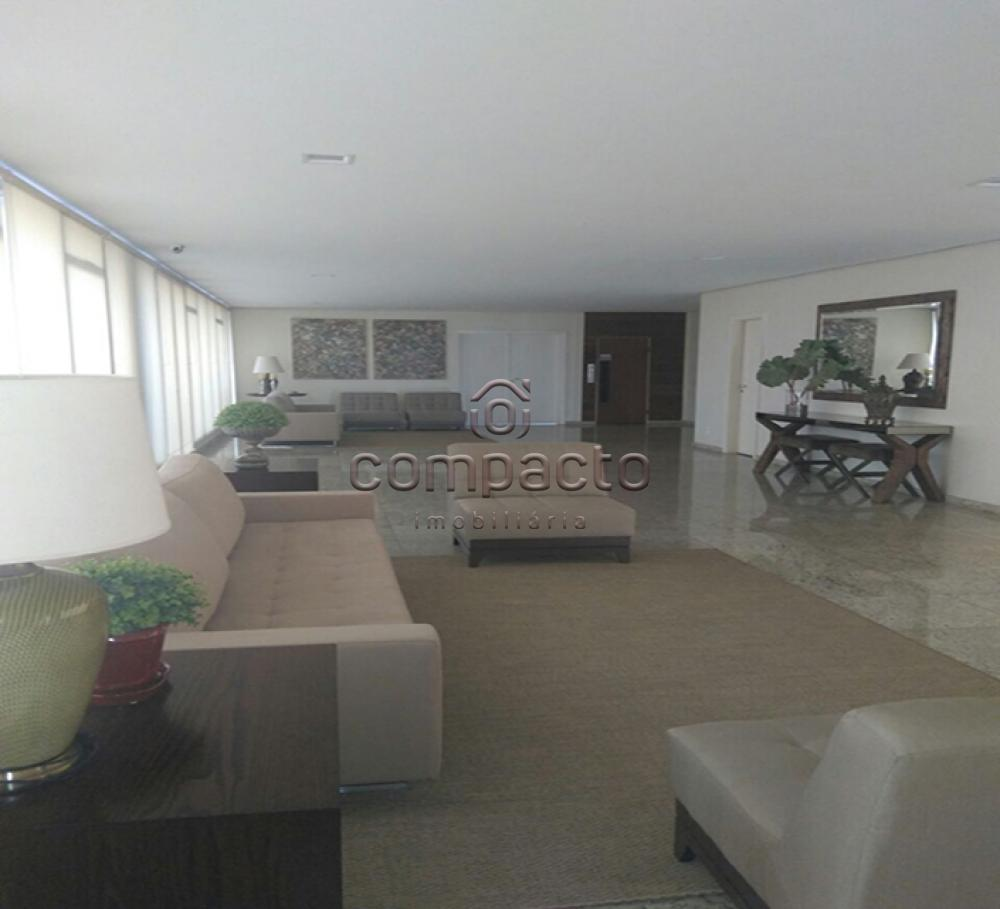 Alugar Apartamento / Padrão em São José do Rio Preto apenas R$ 500,00 - Foto 3
