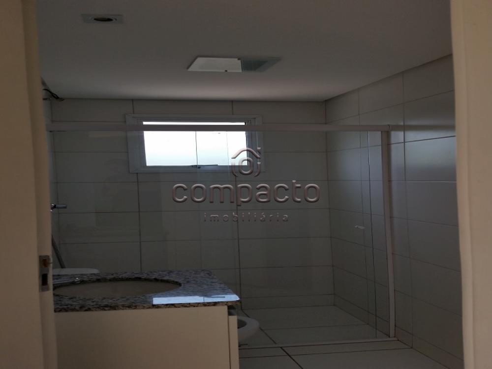 Alugar Apartamento / Padrão em São José do Rio Preto apenas R$ 1.450,00 - Foto 14