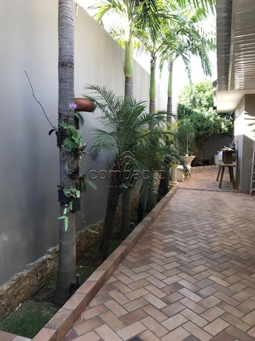 Comprar Casa / Padrão em São José do Rio Preto apenas R$ 850.000,00 - Foto 24
