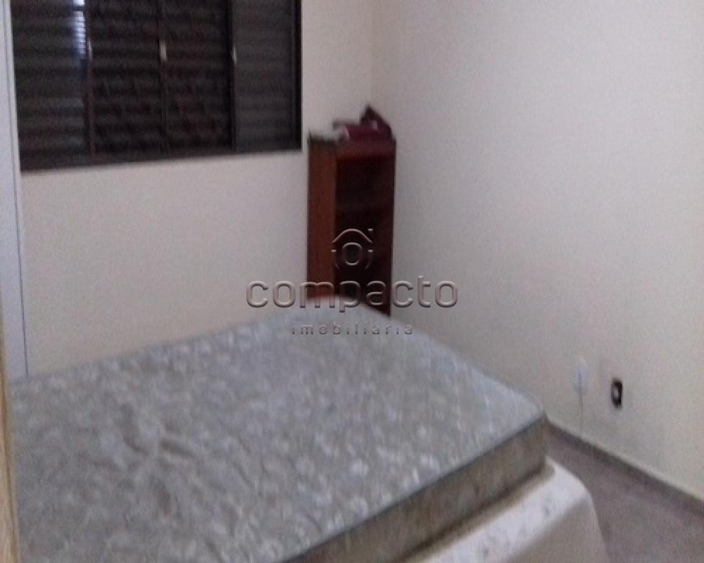 Comprar Rural / Rancho/Chácara em Sales apenas R$ 430.000,00 - Foto 13