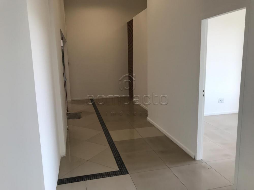 Alugar Comercial / Sala/Loja Condomínio em São José do Rio Preto apenas R$ 4.000,00 - Foto 4