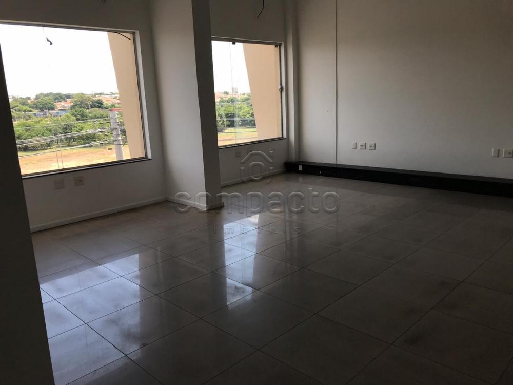 Alugar Comercial / Sala/Loja Condomínio em São José do Rio Preto apenas R$ 4.000,00 - Foto 8
