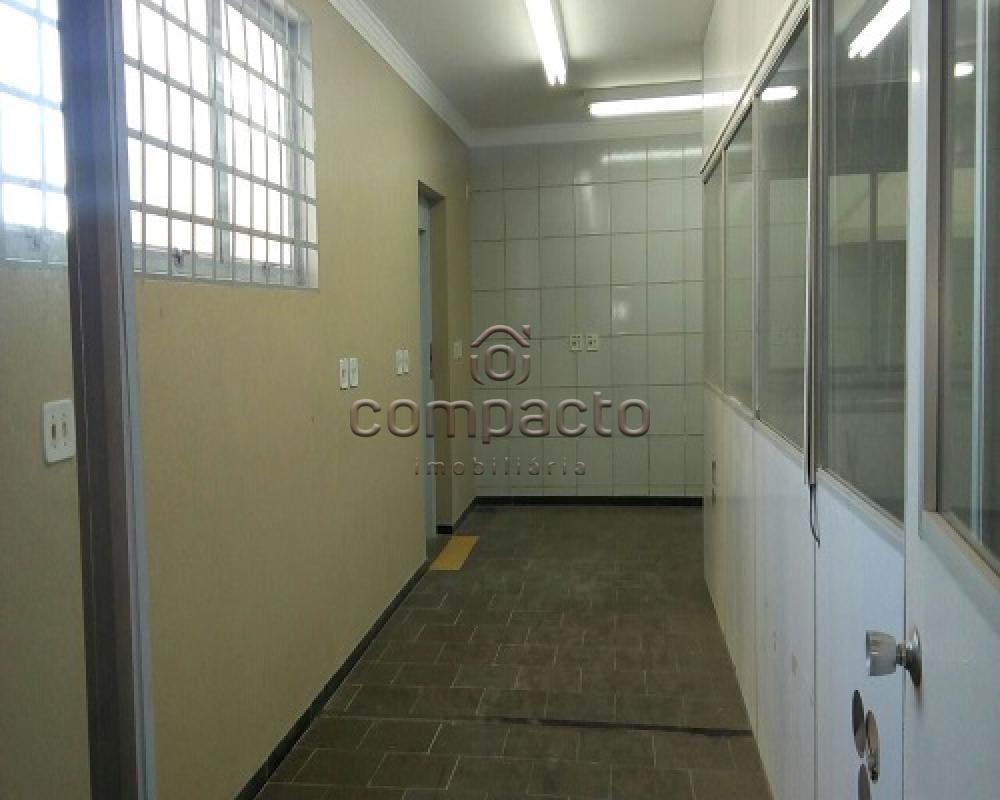 Alugar Comercial / Prédio em São José do Rio Preto apenas R$ 6.000,00 - Foto 15