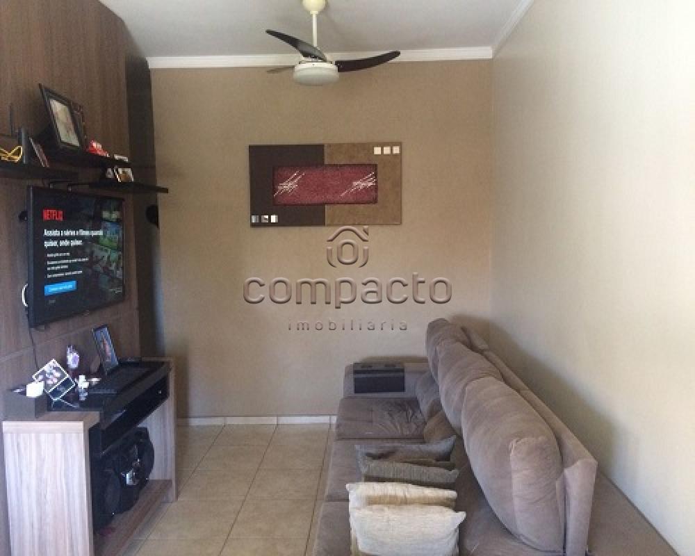 Comprar Casa / Condomínio em São José do Rio Preto apenas R$ 350.000,00 - Foto 3