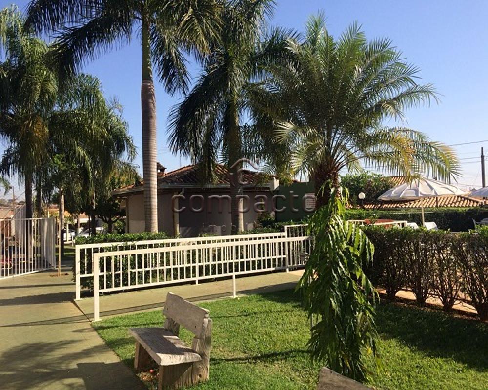 Comprar Casa / Condomínio em São José do Rio Preto apenas R$ 350.000,00 - Foto 12