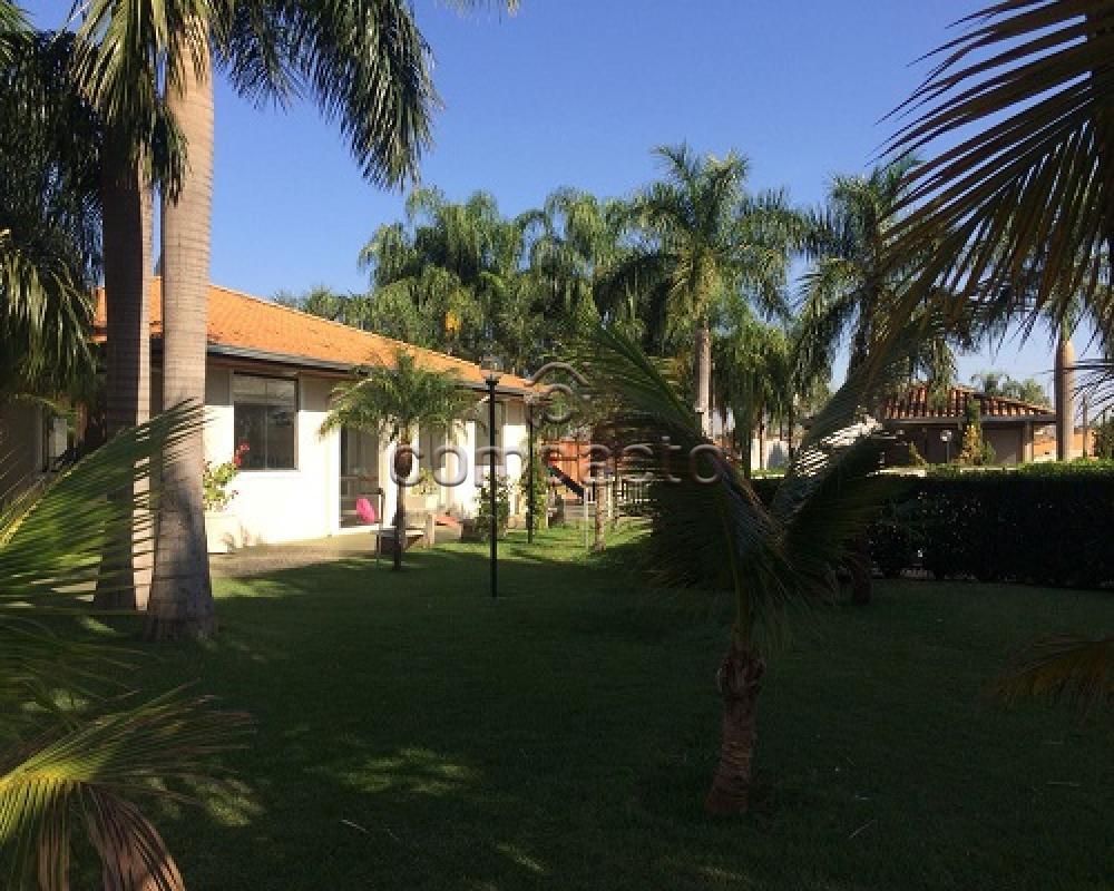 Comprar Casa / Condomínio em São José do Rio Preto apenas R$ 350.000,00 - Foto 15
