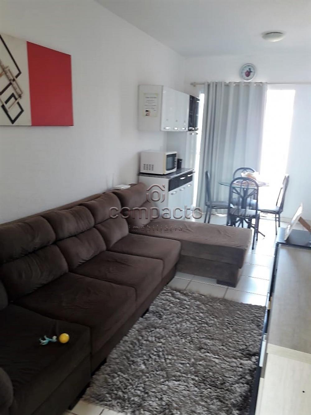 Alugar Casa / Condomínio em São José do Rio Preto apenas R$ 680,00 - Foto 1