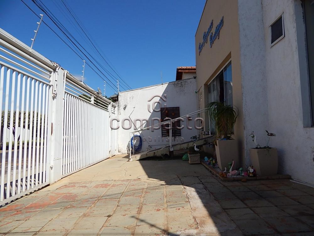Comprar Comercial / Casa em São José do Rio Preto apenas R$ 360.000,00 - Foto 3