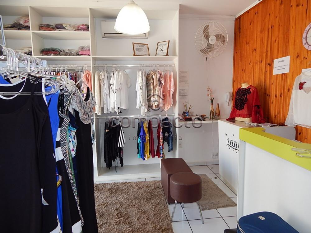 Comprar Comercial / Casa em São José do Rio Preto apenas R$ 360.000,00 - Foto 13