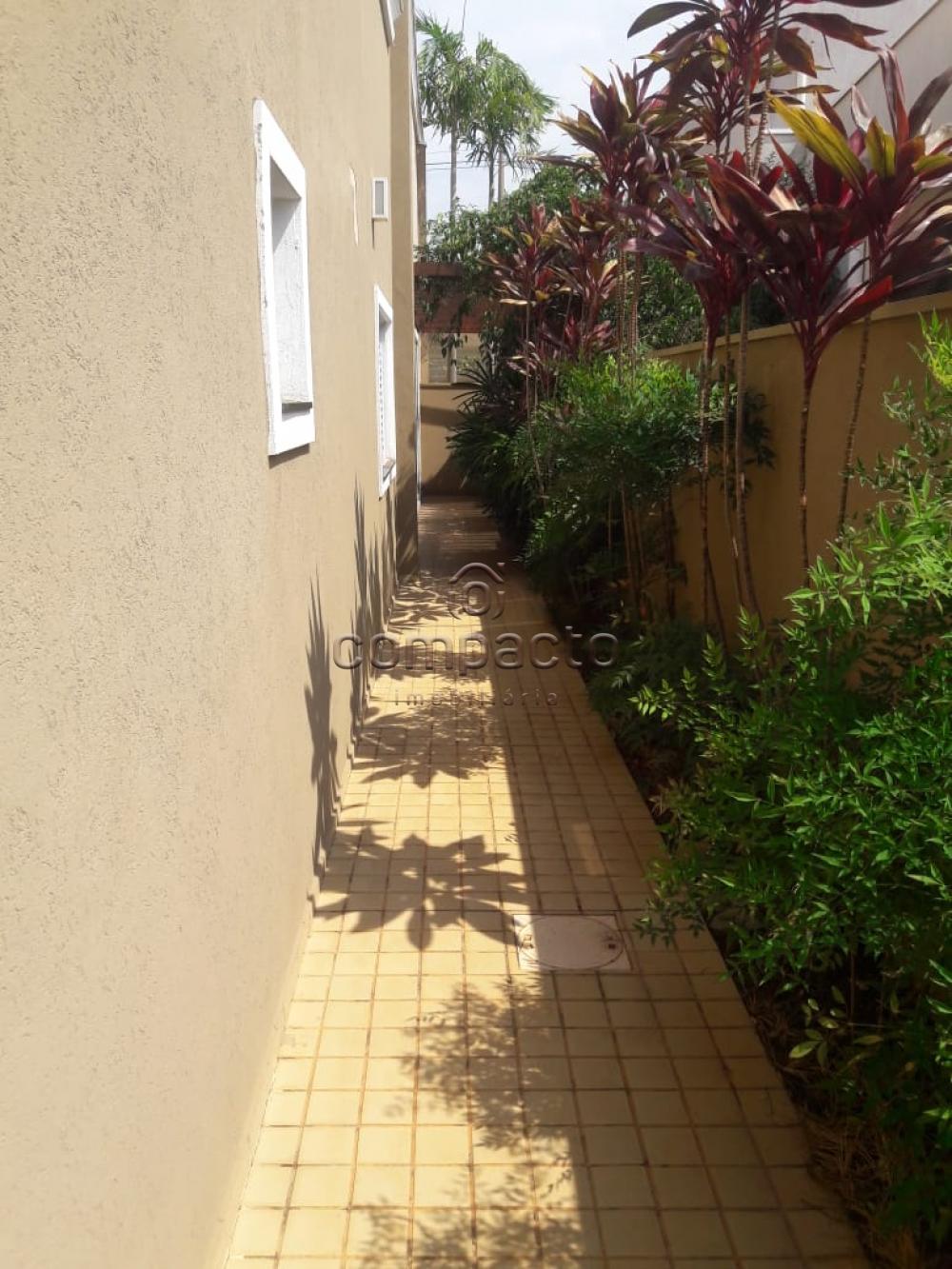Alugar Casa / Condomínio em São José do Rio Preto apenas R$ 5.000,00 - Foto 30