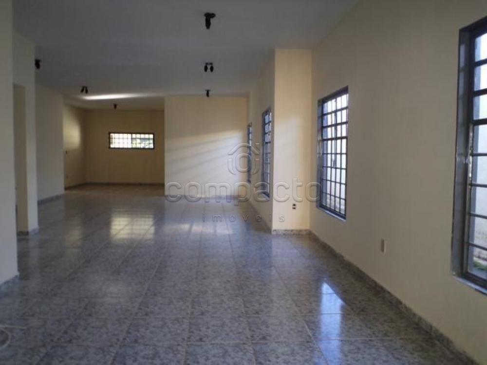 Alugar Casa / Padrão em São José do Rio Preto apenas R$ 3.500,00 - Foto 4