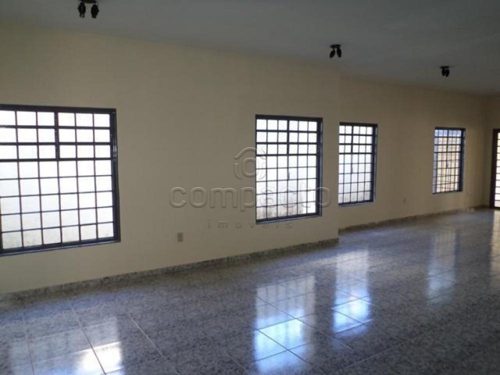 Alugar Casa / Padrão em São José do Rio Preto apenas R$ 3.500,00 - Foto 6