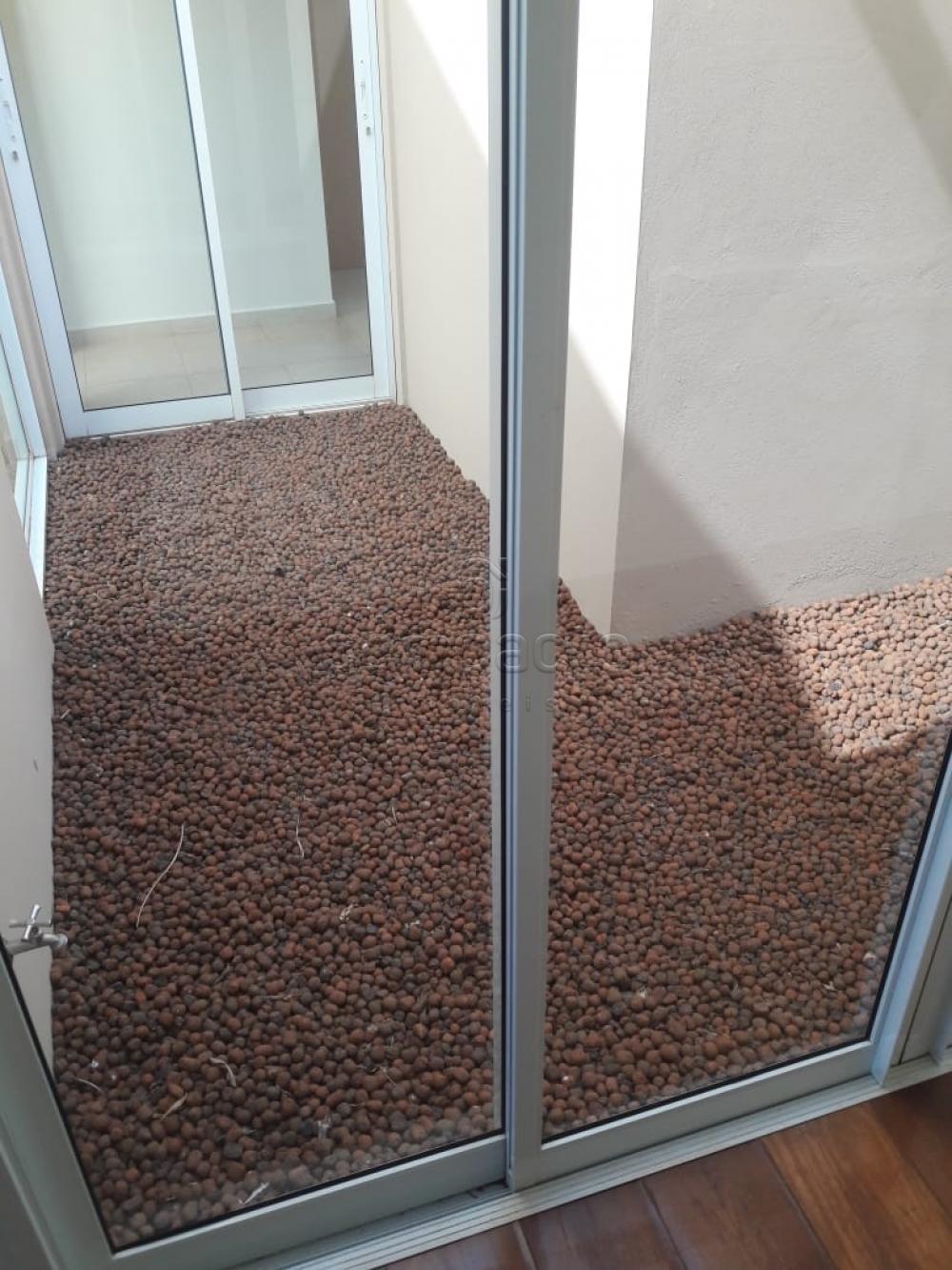 Alugar Casa / Condomínio em São José do Rio Preto apenas R$ 4.500,00 - Foto 4
