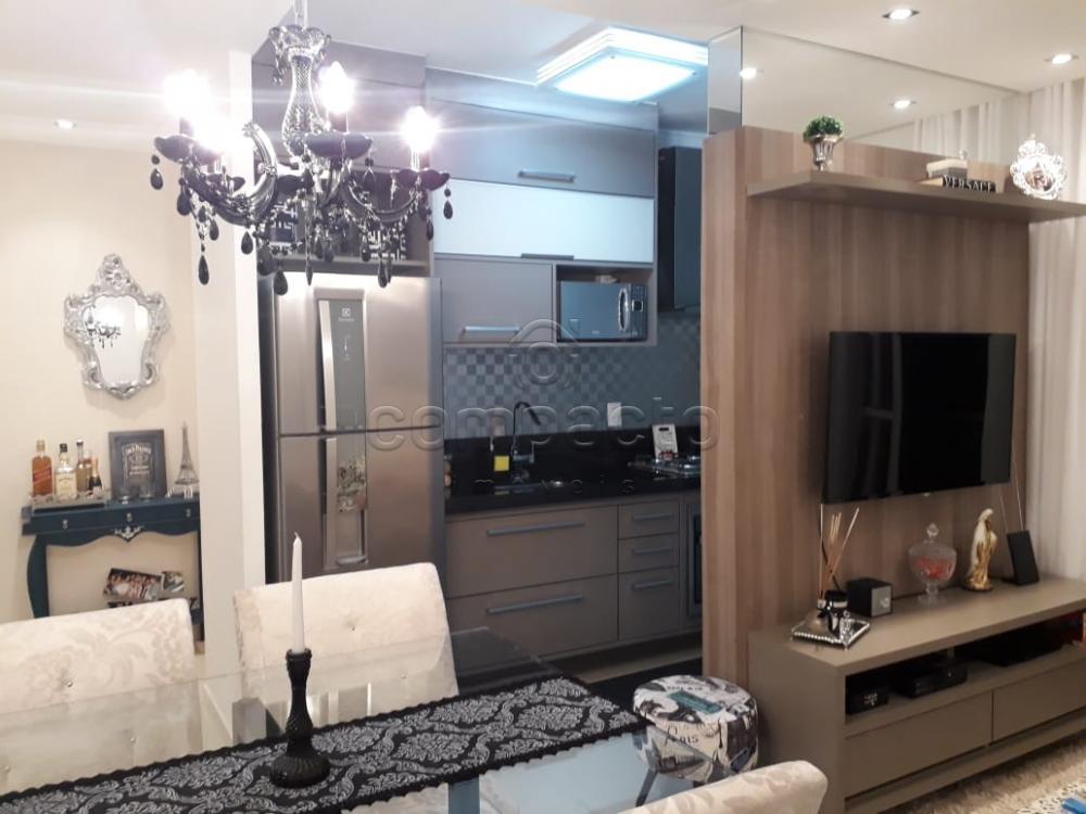 Comprar Apartamento / Padrão em São José do Rio Preto apenas R$ 235.000,00 - Foto 3