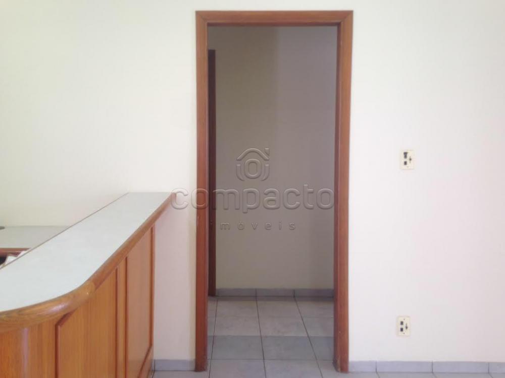 Alugar Comercial / Casa em São José do Rio Preto apenas R$ 2.200,00 - Foto 3