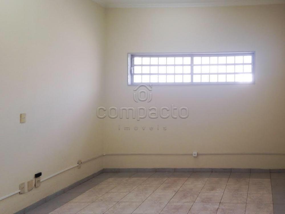 Alugar Comercial / Casa em São José do Rio Preto apenas R$ 2.200,00 - Foto 5