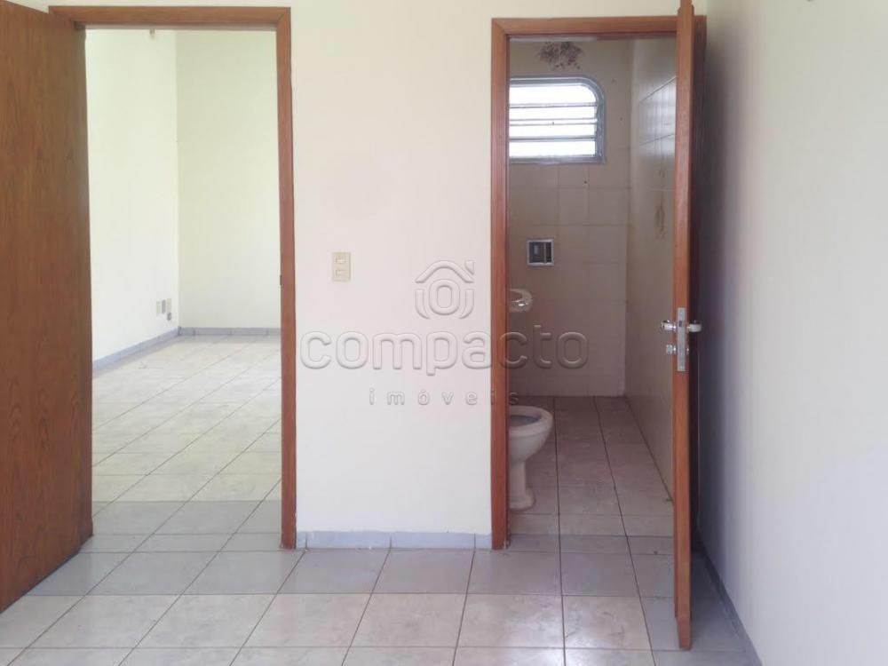 Alugar Comercial / Casa em São José do Rio Preto apenas R$ 2.200,00 - Foto 10
