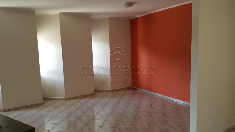 Comprar Casa / Padrão em São José do Rio Preto apenas R$ 550.000,00 - Foto 4