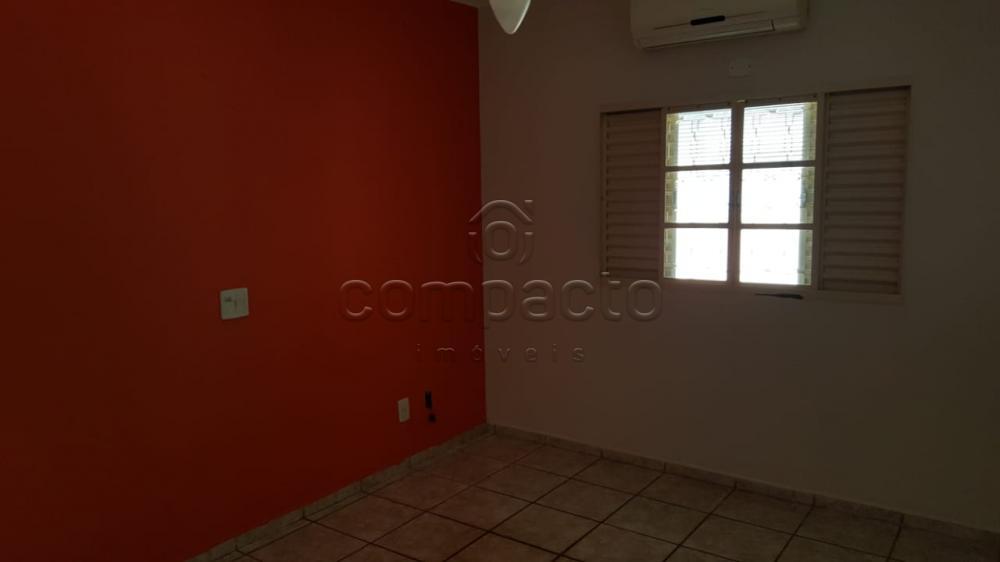 Comprar Casa / Padrão em São José do Rio Preto apenas R$ 550.000,00 - Foto 11