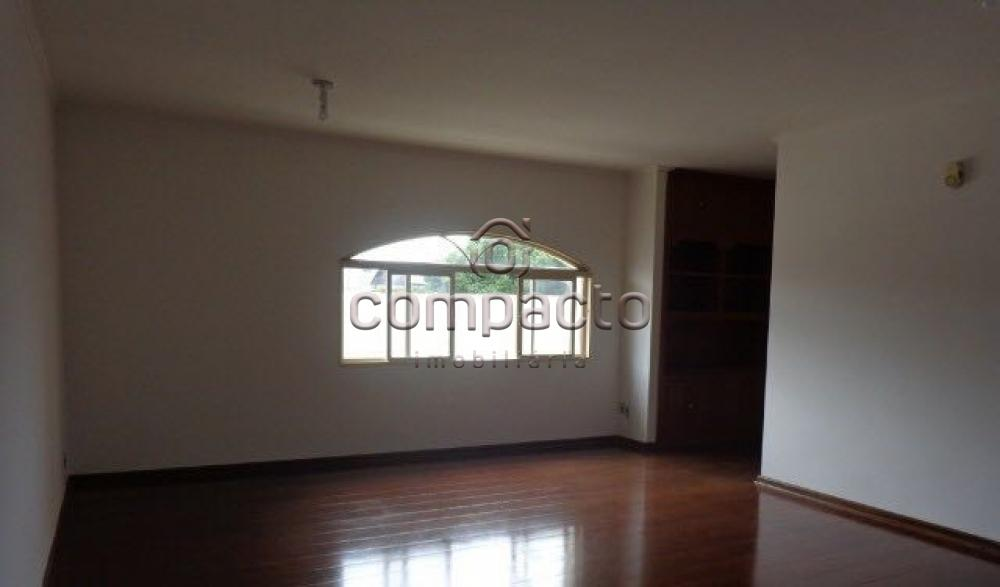 Alugar Apartamento / Padrão em São José do Rio Preto apenas R$ 1.200,00 - Foto 1