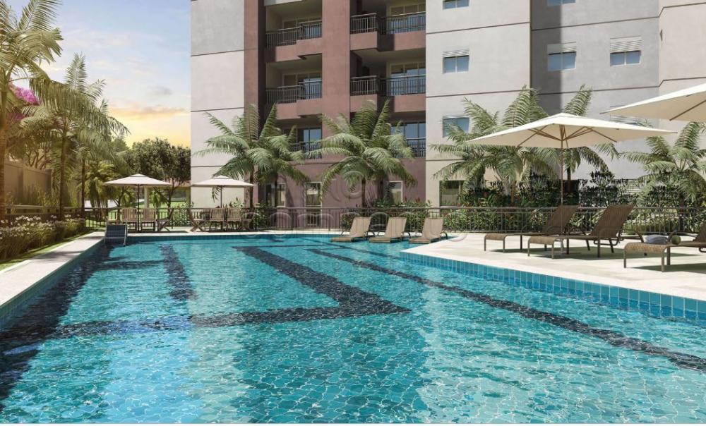 Comprar Apartamento / Padrão em São José do Rio Preto apenas R$ 230.000,00 - Foto 11