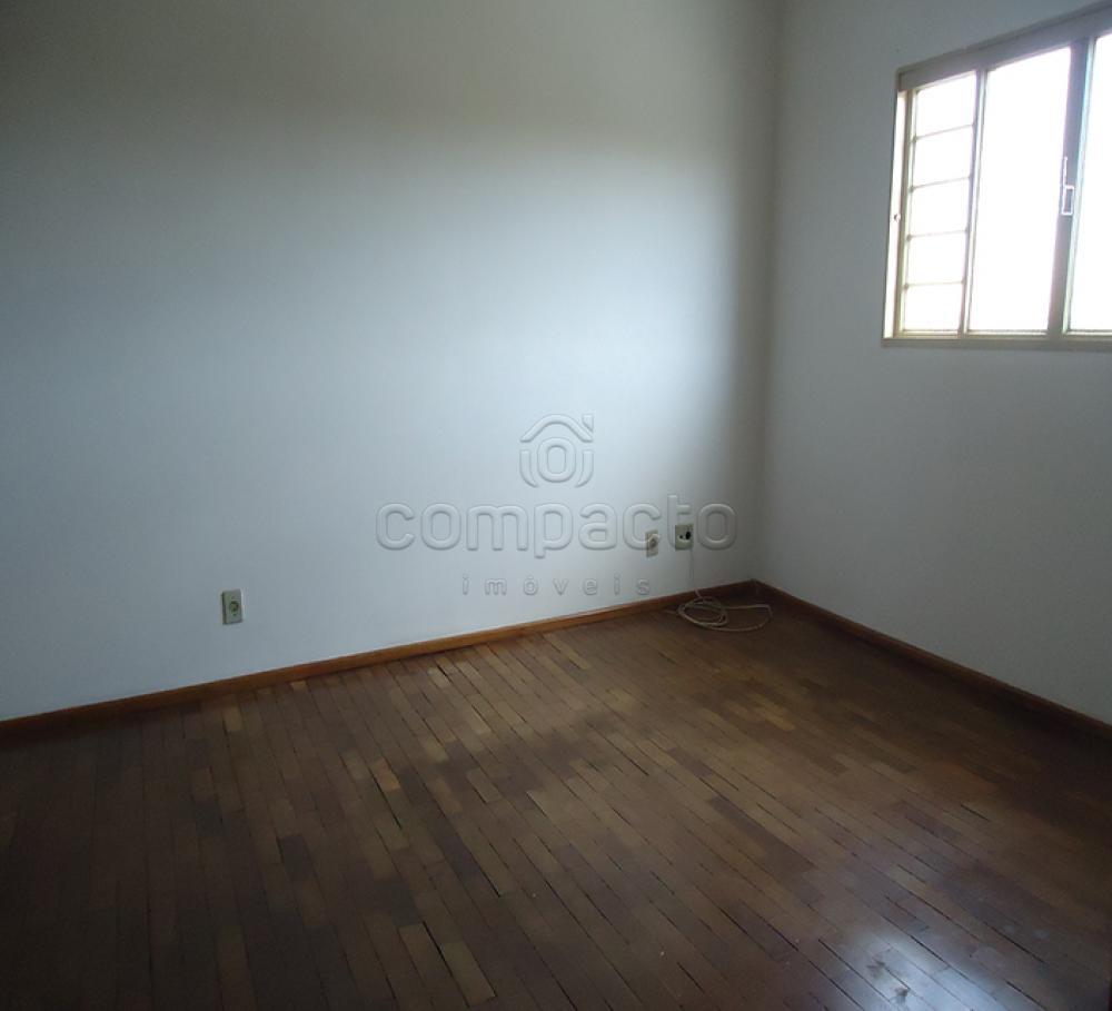 Alugar Apartamento / Padrão em São José do Rio Preto apenas R$ 700,00 - Foto 3