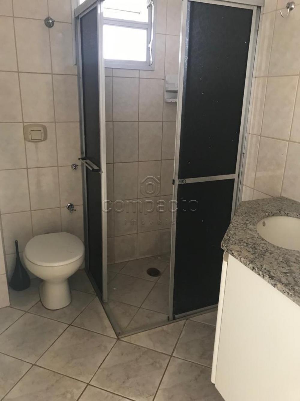 Alugar Apartamento / Padrão em São José do Rio Preto apenas R$ 900,00 - Foto 3