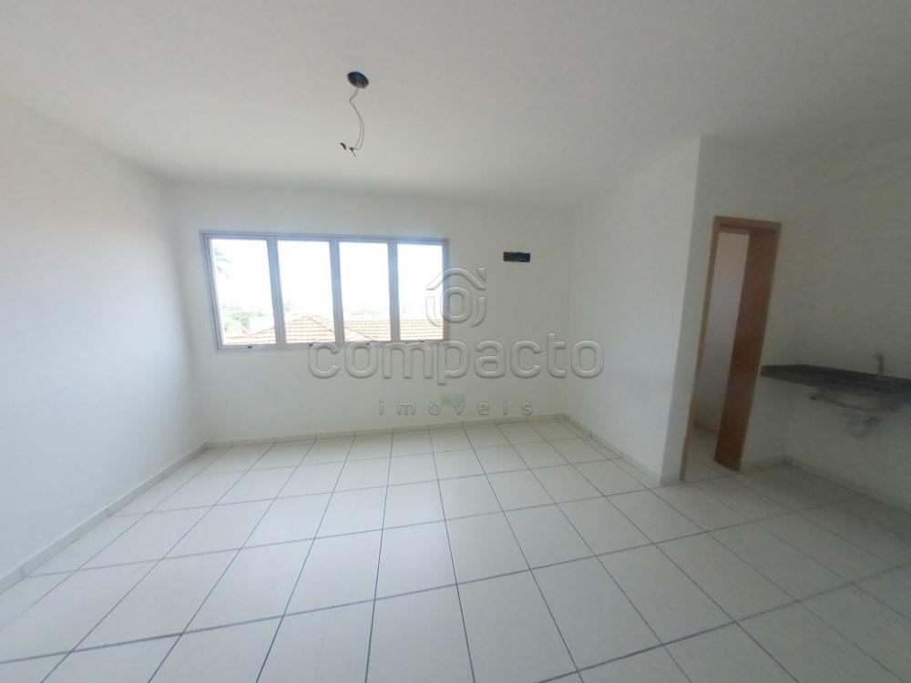 Alugar Comercial / Sala/Loja Condomínio em São José do Rio Preto apenas R$ 800,00 - Foto 1