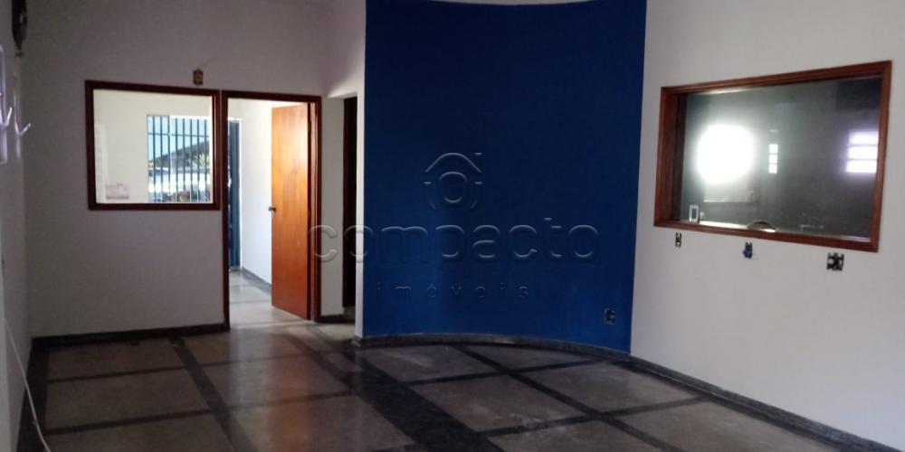 Alugar Comercial / Casa em São José do Rio Preto apenas R$ 4.500,00 - Foto 1