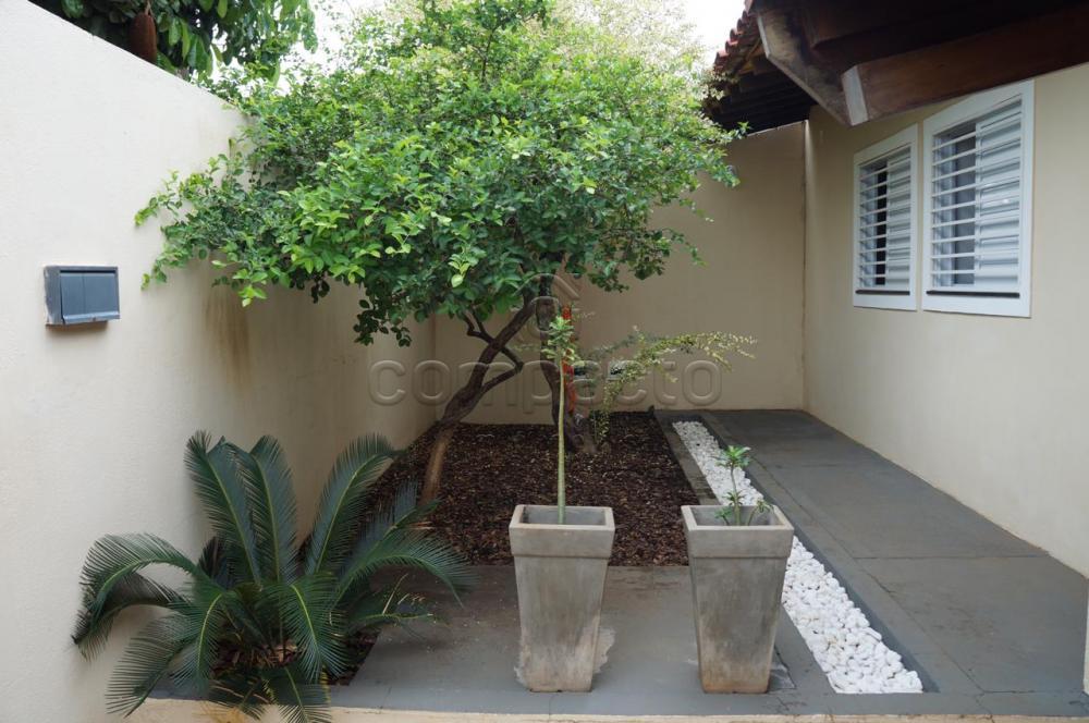 Comprar Casa / Padrão em São José do Rio Preto apenas R$ 520.000,00 - Foto 1