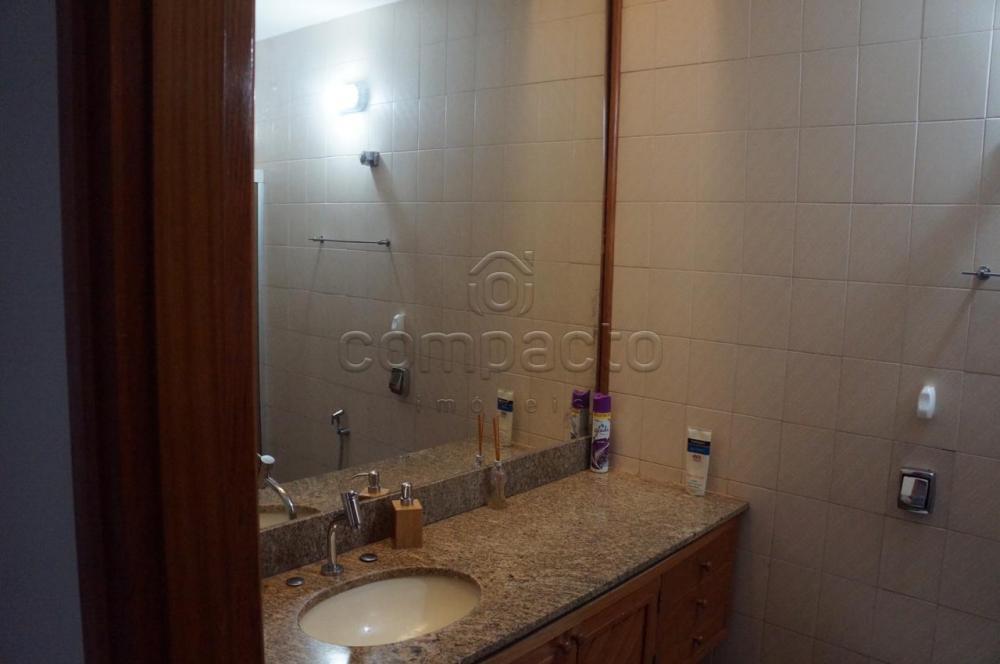 Comprar Casa / Padrão em São José do Rio Preto apenas R$ 520.000,00 - Foto 16