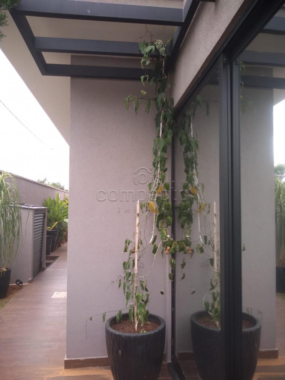 Comprar Casa / Condomínio em São José do Rio Preto apenas R$ 650.000,00 - Foto 26