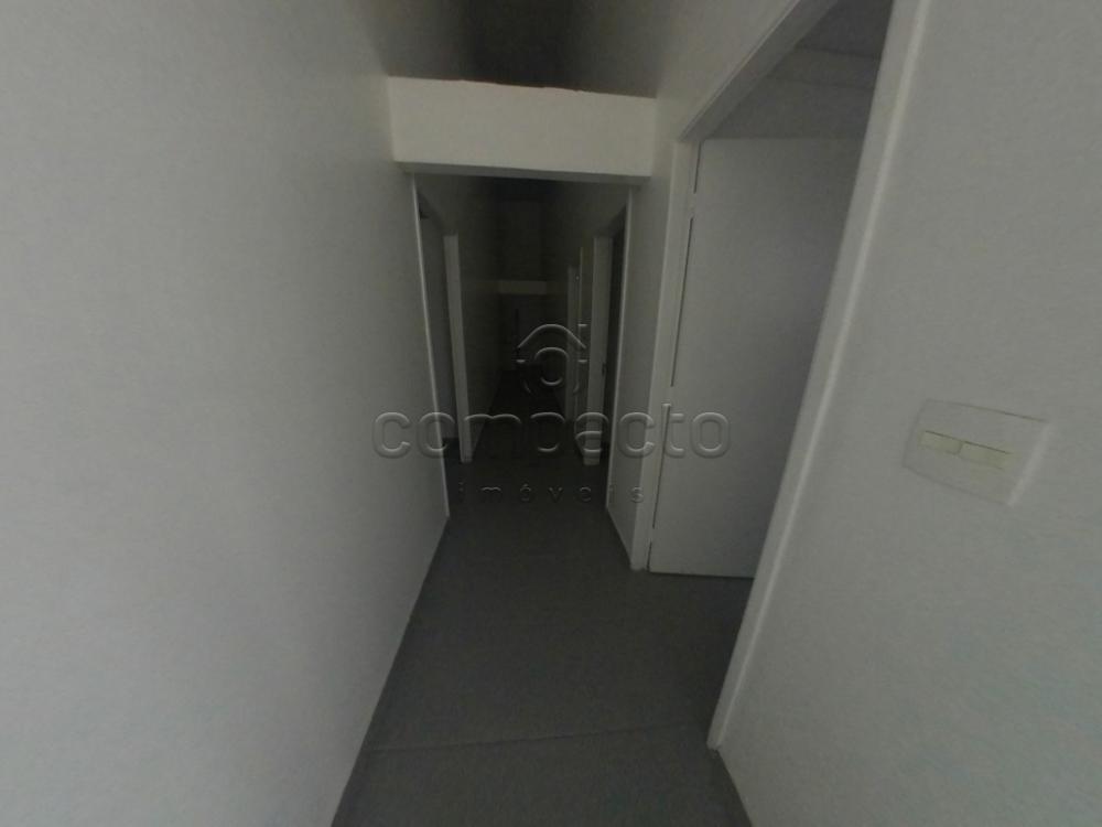 Alugar Comercial / Casa em São José do Rio Preto apenas R$ 1.950,00 - Foto 3