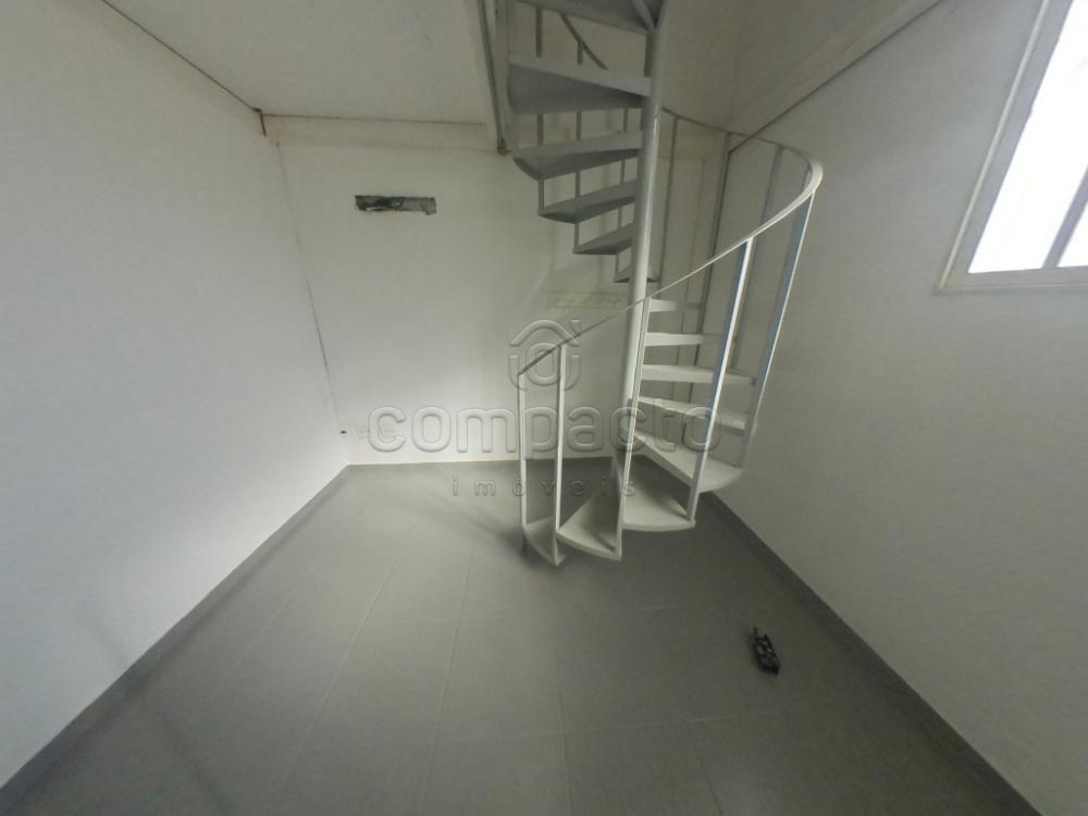 Alugar Comercial / Casa em São José do Rio Preto apenas R$ 1.950,00 - Foto 4