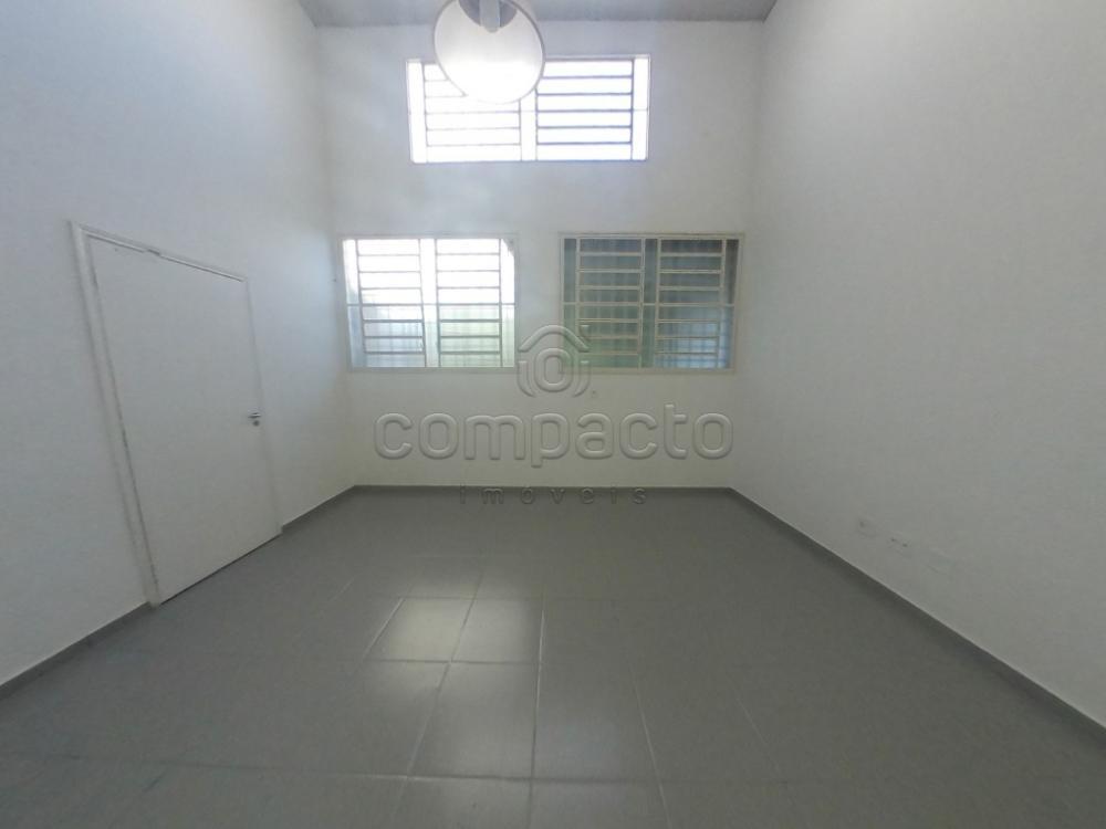 Alugar Comercial / Casa em São José do Rio Preto apenas R$ 1.950,00 - Foto 12