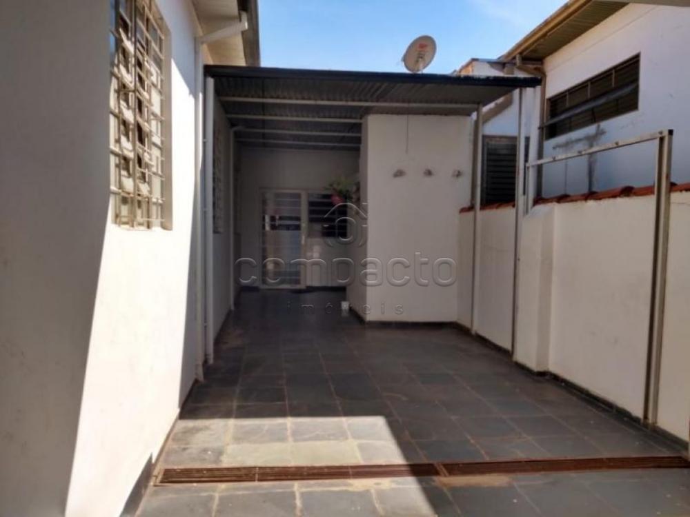Comprar Comercial / Casa em São José do Rio Preto apenas R$ 450.000,00 - Foto 10