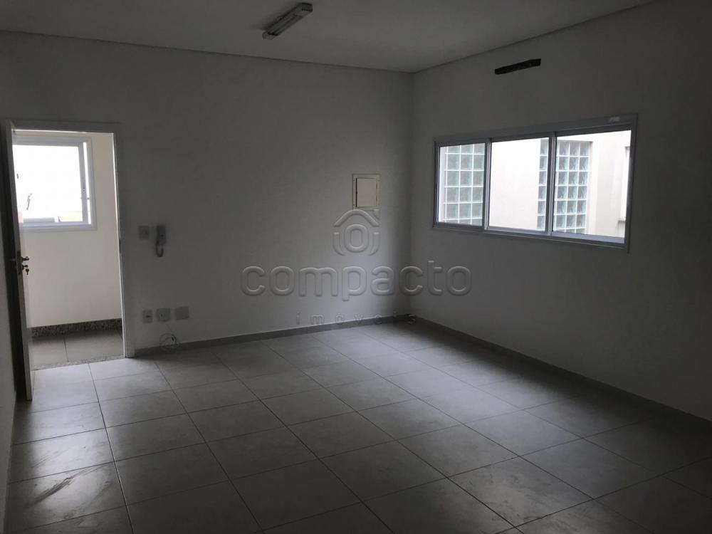 Alugar Comercial / Sala/Loja Condomínio em São José do Rio Preto apenas R$ 950,00 - Foto 2