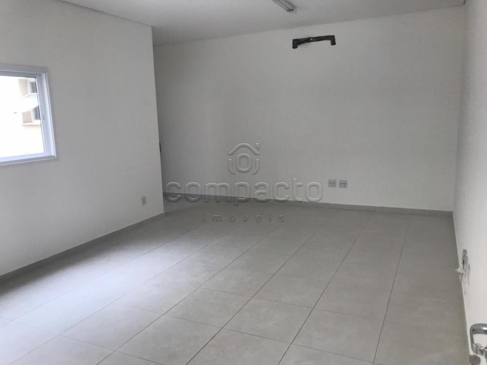 Alugar Comercial / Sala/Loja Condomínio em São José do Rio Preto apenas R$ 950,00 - Foto 3