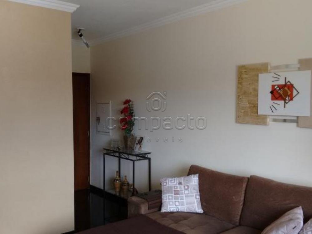 Comprar Apartamento / Padrão em São José do Rio Preto apenas R$ 255.000,00 - Foto 3
