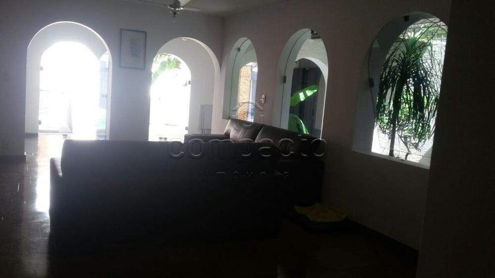 Comprar Casa / Padrão em São José do Rio Preto apenas R$ 595.000,00 - Foto 4