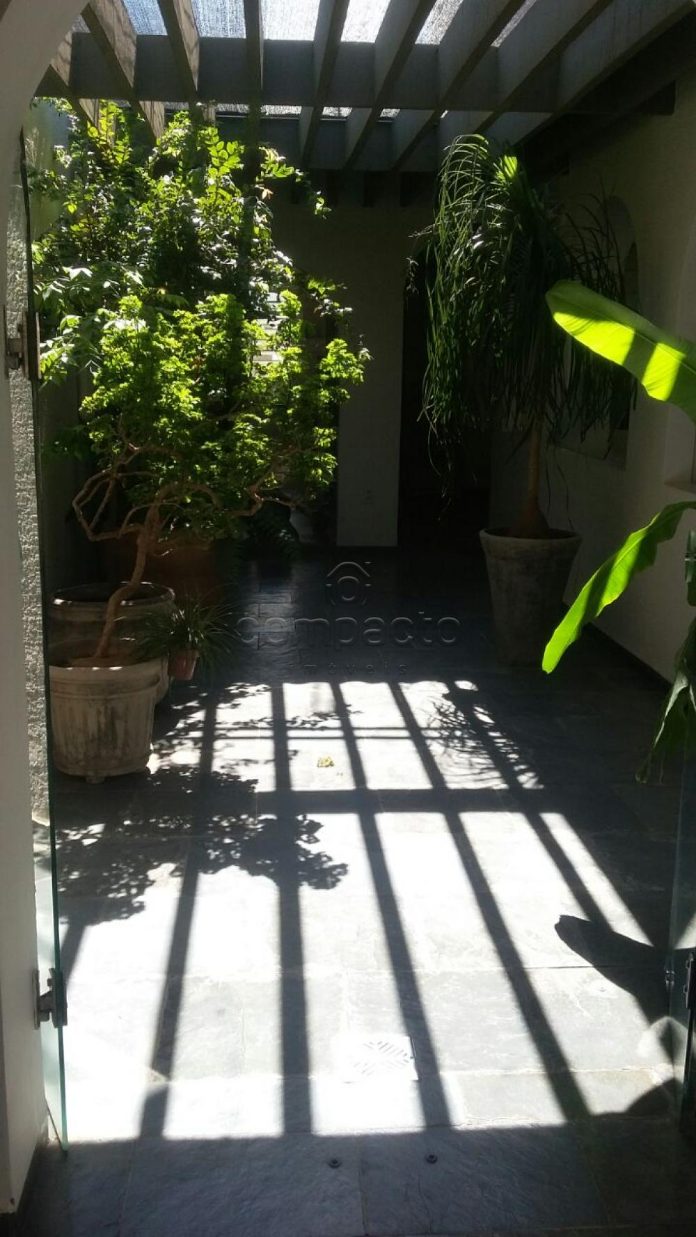 Comprar Casa / Padrão em São José do Rio Preto apenas R$ 595.000,00 - Foto 18