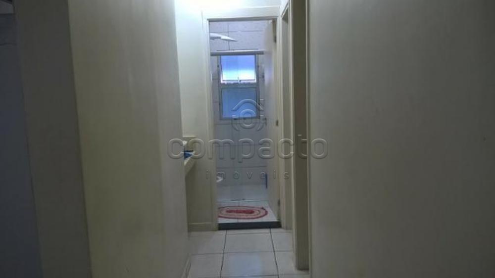 Comprar Apartamento / Padrão em São José do Rio Preto apenas R$ 180.000,00 - Foto 6