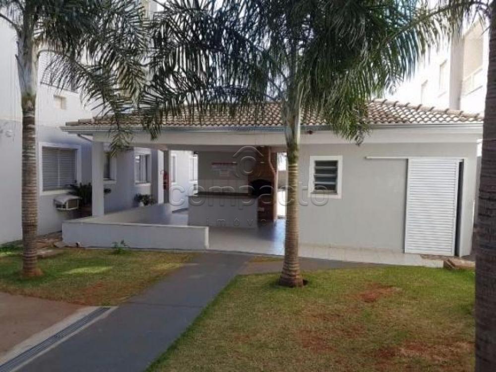 Alugar Apartamento / Cobertura em São José do Rio Preto apenas R$ 1.500,00 - Foto 14