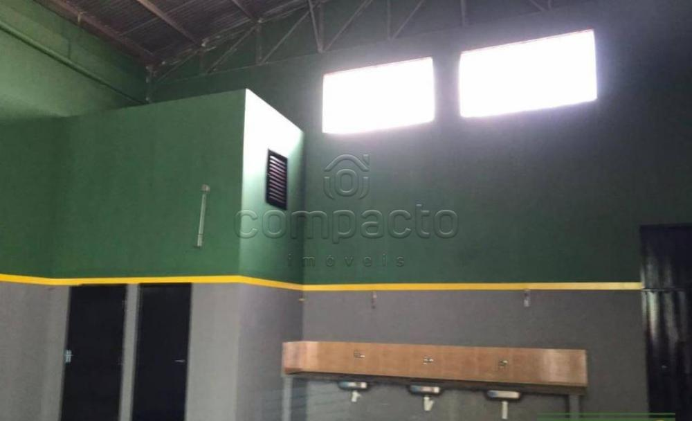 Alugar Comercial / Barracão em São José do Rio Preto apenas R$ 3.200,00 - Foto 2