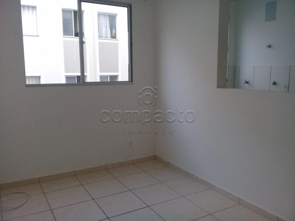 Alugar Apartamento / Padrão em São José do Rio Preto apenas R$ 650,00 - Foto 1