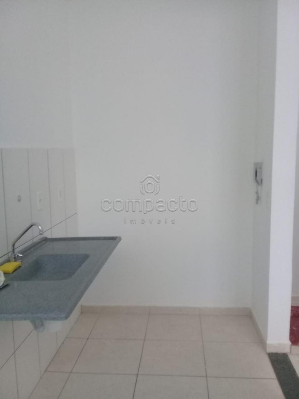 Alugar Apartamento / Padrão em São José do Rio Preto apenas R$ 650,00 - Foto 5