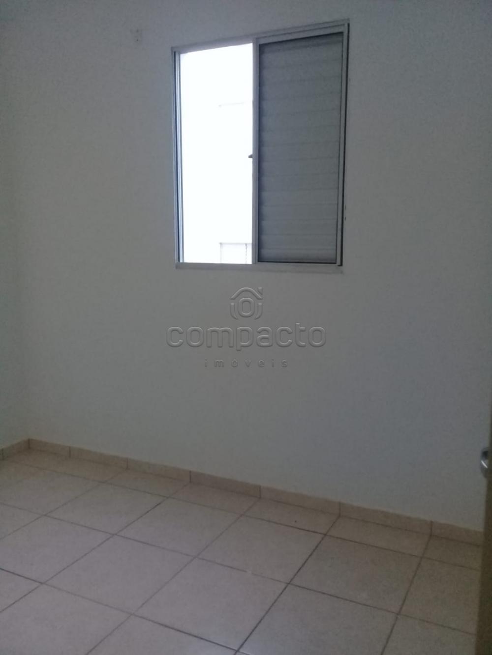 Alugar Apartamento / Padrão em São José do Rio Preto apenas R$ 650,00 - Foto 9